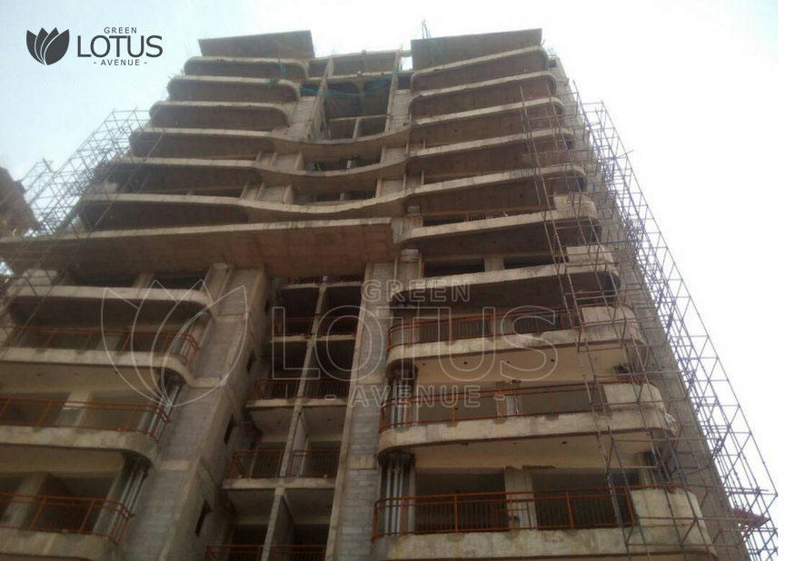 Green-Lotus-Avenue-Construction-Oct-4