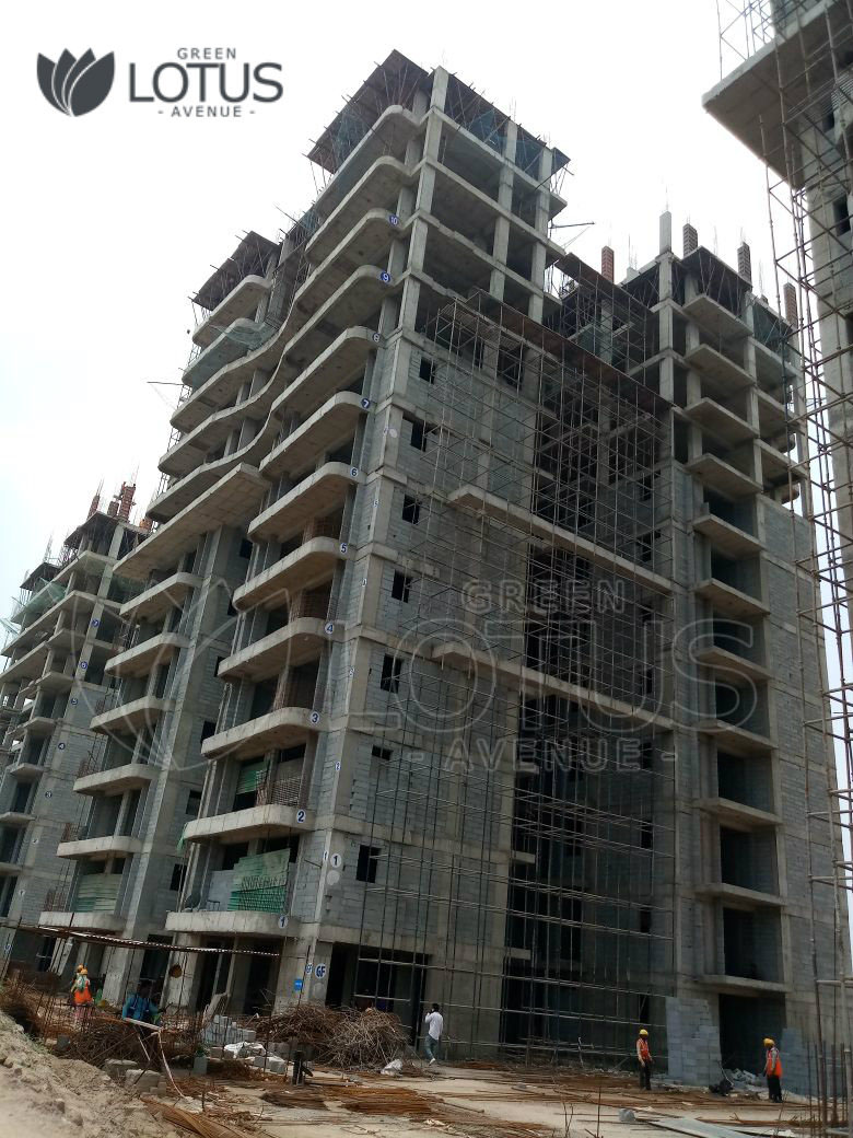 Green Lotus Avenue Construction July Update
