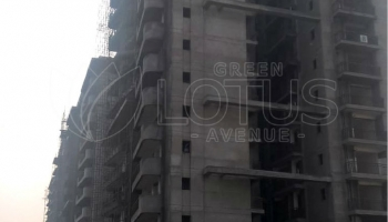 Green-Lotus-Avenue-Construction-Dec-7
