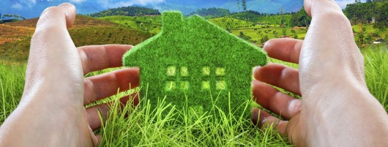 Things to Consider Before Making a Green Home